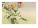 Japanese Print - Mantis Giclee Print by Robert Gillmor