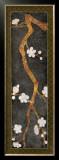 Cherry Blossom Branch I Prints by Erin Galvez
