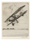 German Single-Seat Fighter, Armed with Two Machine Guns Giclee Print