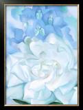 White Rose W/ Lakspur No.2 Print by Georgia O'Keeffe