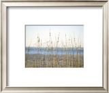 Coastal Grasses Print by Jeff Kauck