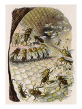 Humanised Bees in a Hive Giclee Print