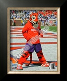 Clemson University Tigers Mascot Framed Photographic Print