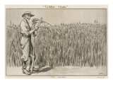 Golden Grain by Wilmot Lunt Giclee Print