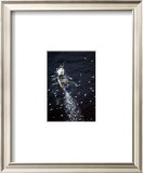 Fish in Sea Prints by Jean-Marie Liot