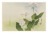 Japanese Print - Flowers Giclee Print by Robert Gillmor