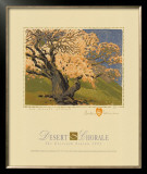 The Bishop's Apricot Tree Prints by Gustave Baumann