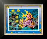 Water Babies Yellowfish Art by Tom Arma