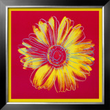 Daisy, c.1982 (Fuchsia and Yellow) Art by Andy Warhol
