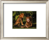 Imaginary Safari, Lion Print by Tom Arma