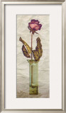Rose in a Pot III Poster by Giancarlo Riboli