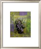 Fines Herbes II Print by Giancarlo Riboli