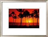 Hawaiian Sunset Posters by Randy Jay Braun