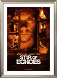 Stir of Echoes Posters