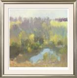 Yellow Pond Limited Edition Framed Print by Steve Parker