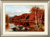 Autumn's Fire Prints by Edward Wilkins Waite