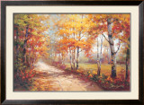 Autumn Walk II Prints by Stephen Douglas