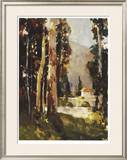 Italian Villa Limited Edition Framed Print by Ted Goerschner