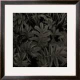 Plantes, c.2004 Framed Giclee Print by Jacky Lecouturier