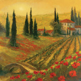 Poppies of Toscano I Art by Art Fronckowiak