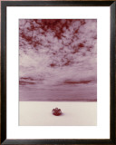 Salt Flat Land Speed Cloud Framed Giclee Print by David Perry