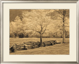 Smokies Fence Posters by Wendy Caro