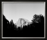 Half Dome in Trees Posters by Bradford Smith
