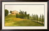 Tuscan Hills Posters by Jim Chamberlain