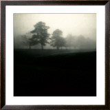 Fog Tree Study II Posters by Jamie Cook