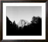 Half Dome in Trees Prints by Bradford Smith