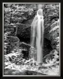 Nature's Jewel II Prints by Charlene Winter Olson