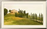 Tuscan Hills Print by Jim Chamberlain