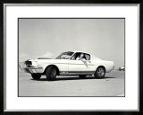 First Shelby Mustang GT350 Framed Giclee Print