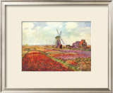 Tulips in Holland Print by Claude Monet