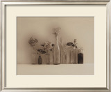 Flower Collection Prints by Ian Winstanley