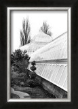 Conservatory IV Print by Laura Denardo