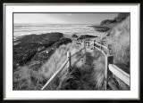 Pathway to Beach Poster by Dennis Frates