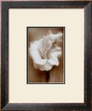 Gladiolus Art by Christine Zalewski