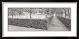 Hornbeam Harbor Prints by  Gomes