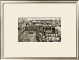 At the Back of the Schenkweg Framed Giclee Print by Vincent van Gogh