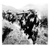 Machine Gun on a Mule, Near San Martial; Spanish Civil War Giclee Print