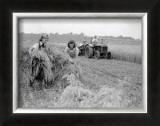 Women at War: On the Land Art