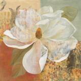 Magnolia Morning II Poster von Carol Robinson