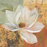 Magnolia Morning I Kunstdrucke von Carol Robinson