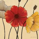 Erwartete Blüten II Poster von Carol Robinson