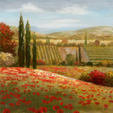 Tuscan Cypress I Print by  Nan