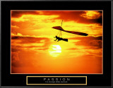 Passion: Hang Glider Posters