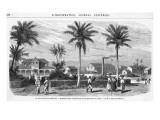 Suriname Plantation, Giclee Print