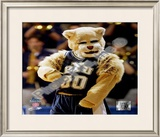 Brigham Young University Mascot Framed Photographic Print