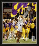 Louisiana State University Framed Photographic Print